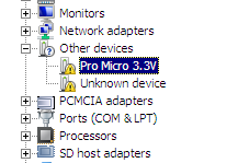 The Pro Micro appears in Device Manager