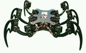 Hexapod